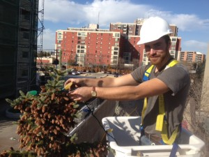 Jon Tree Bucket Truck Summer